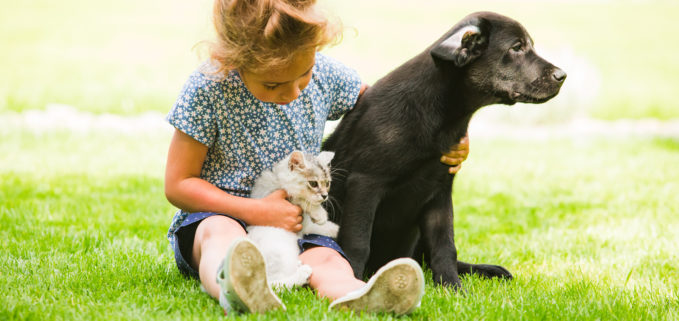 girl outside with kitten and dog